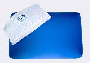 bed bug resistant mattresses
