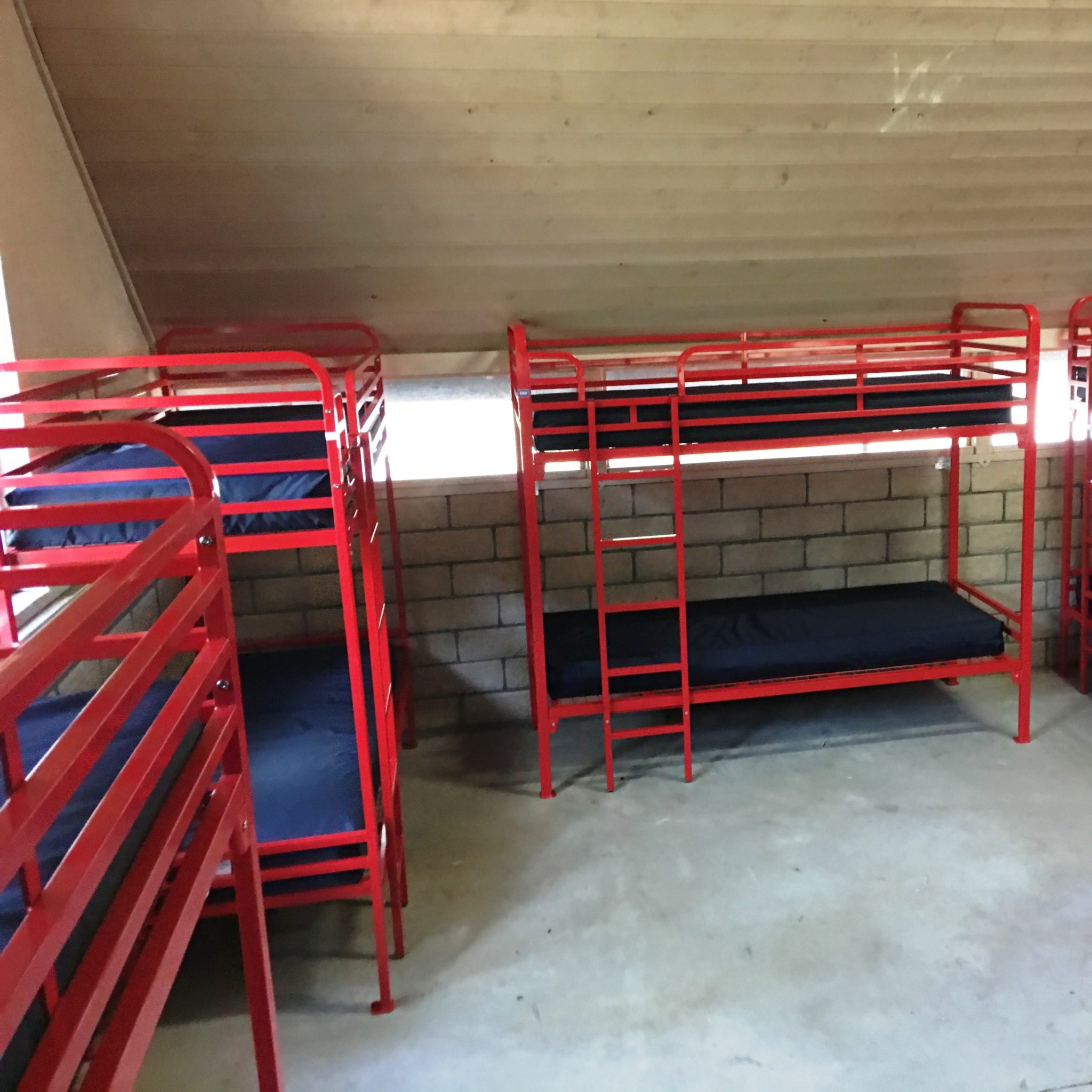 Picture of: Dallas Single Over Single Bunk Bed Commercial Use Ess Universal