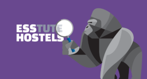 What Hostels Have to Say About ESS' Bunk Beds & Mattresses